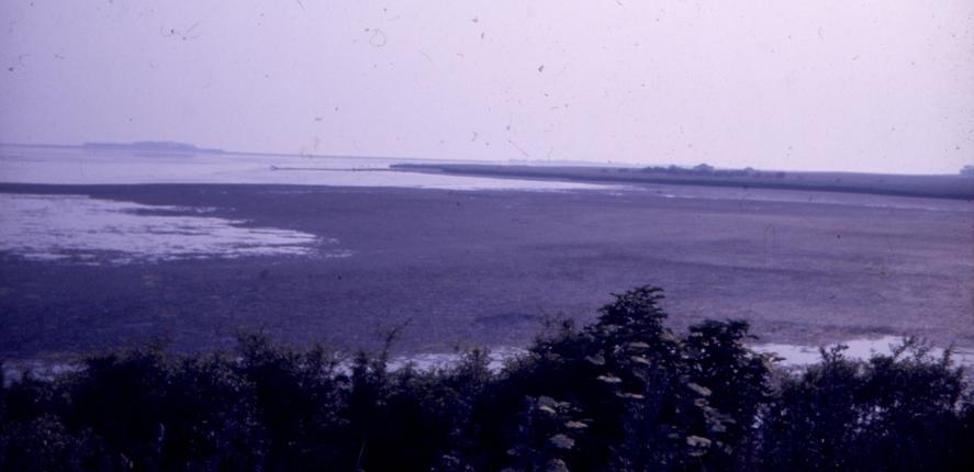 1987: Værste forurening i fjorden ved basnaes