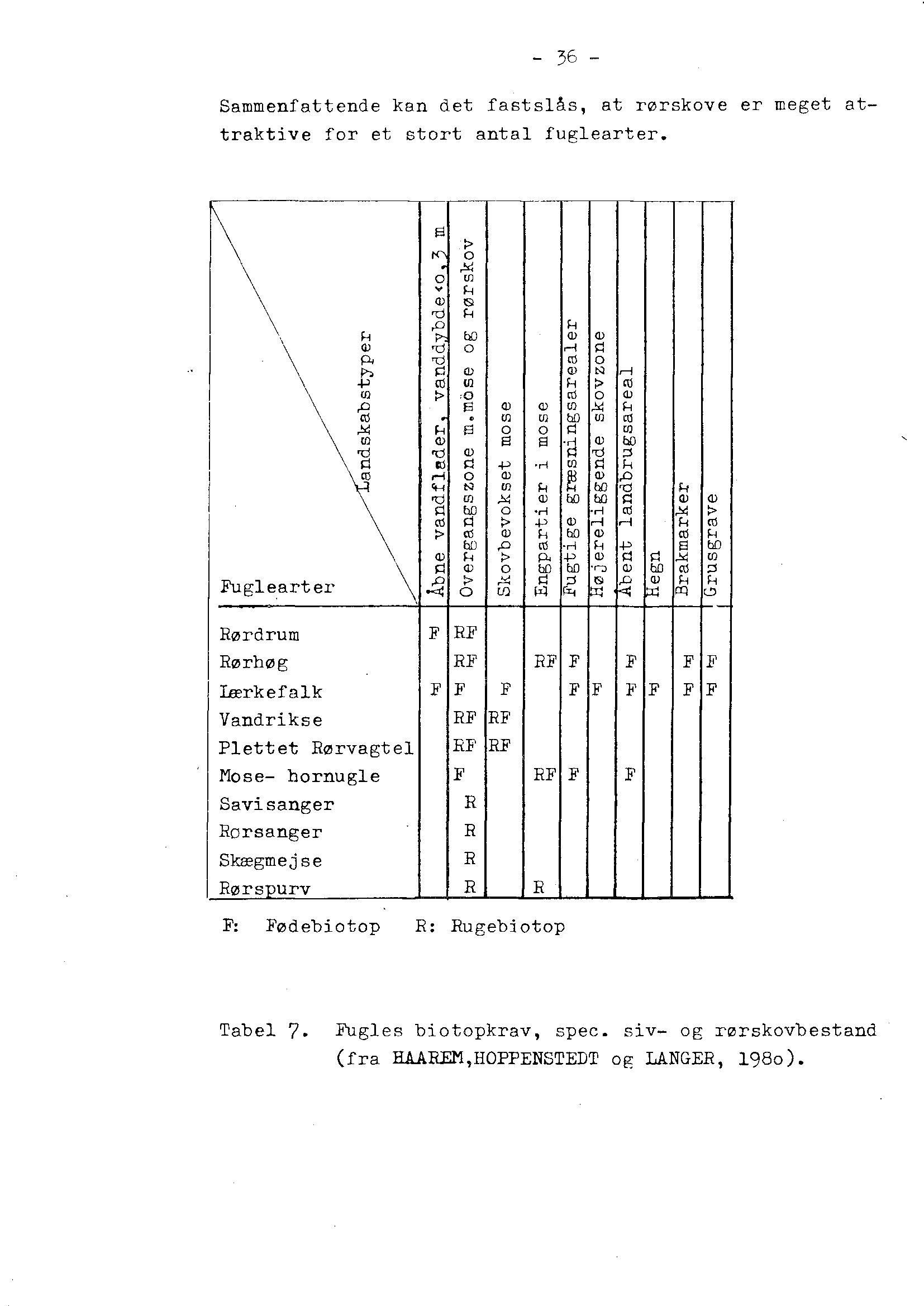 Rodzoneanlæg som fuglebiotop PNG